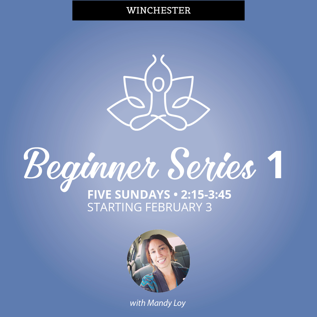 Beginner Series Winchester